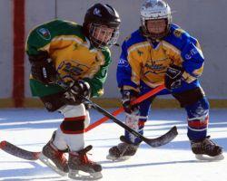 Детский хоккей 2